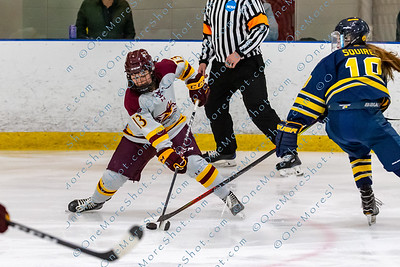 Alvernia_Womens_Ice_Hockey_vs_Neumann_12-06-2019-13