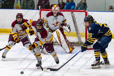 Alvernia_Womens_Ice_Hockey_vs_Neumann_12-06-2019-20