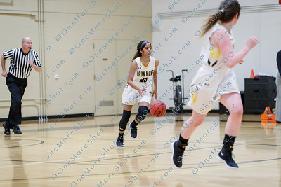 BMC-Basketball_vs_Haverford_11-29-2018-41