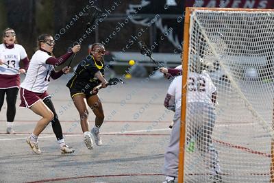 BrynMawr_Lacrosse_vs_Rosemont_03-25-2019-40