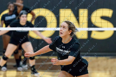 Cedar_Crest_VOLLEYBALL_09-06-2018-14