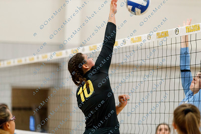 Cedar_Crest_VOLLEYBALL_09-06-2018-28