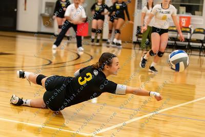 Cedar_Crest_Volleyball_vs_Gynedd_Mercy_09-12-2019-14