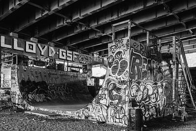 FDR_SkatePark_09-01-2020-3