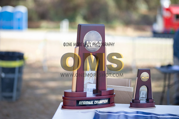 NCAA DII East Region CROSS COUNTRY -  11/09/2019