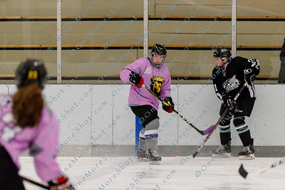 Kings_Womens_Ice_Hockey_vs_Stevenson_12-01-2018-42