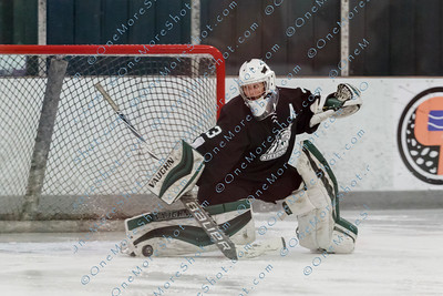 Kings_Womens_Ice_Hockey_vs_Stevenson_12-01-2018-31