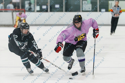 Kings_Womens_Ice_Hockey_vs_Stevenson_12-01-2018-36