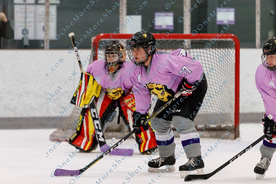 Kings_Womens_Ice_Hockey_vs_Stevenson_12-01-2018-9