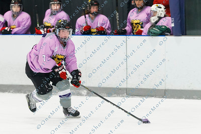 Kings_Womens_Ice_Hockey_vs_Stevenson_12-01-2018-27