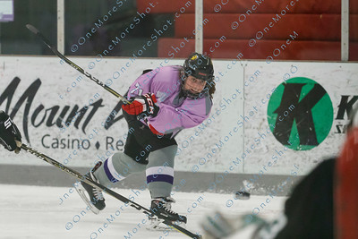 Kings_Womens_Ice_Hockey_vs_Stevenson_12-01-2018-21