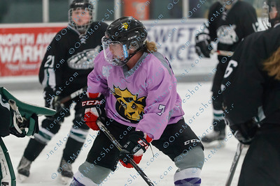 Kings_Womens_Ice_Hockey_vs_Stevenson_12-01-2018-35