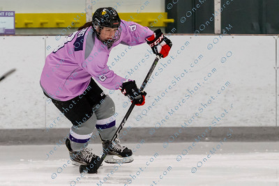 Kings_Womens_Ice_Hockey_vs_Stevenson_12-01-2018-40