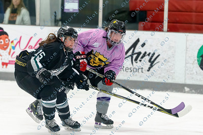 Kings_Womens_Ice_Hockey_vs_Stevenson_12-01-2018-29