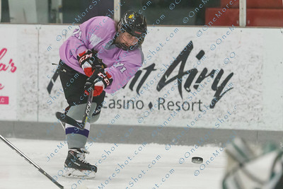Kings_Womens_Ice_Hockey_vs_Stevenson_12-01-2018-20