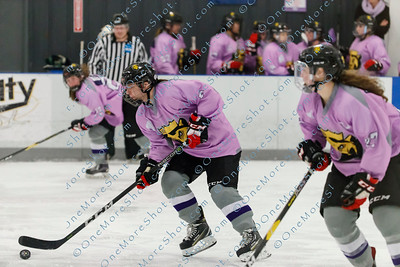 Kings_Womens_Ice_Hockey_vs_Stevenson_12-01-2018-30