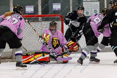 Kings_Womens_Ice_Hockey_vs_Stevenson_12-01-2018-10