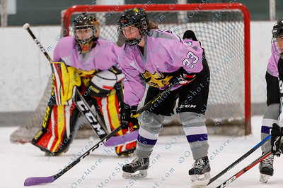 Kings_Womens_Ice_Hockey_vs_Stevenson_12-01-2018-12