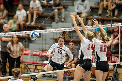 Muhlenberg_VOLLEYBALL_vs_Haverford_09-19-2018-216