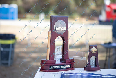 NCAA_East_Region_Cross_Country_Championships_11-09-2019-2