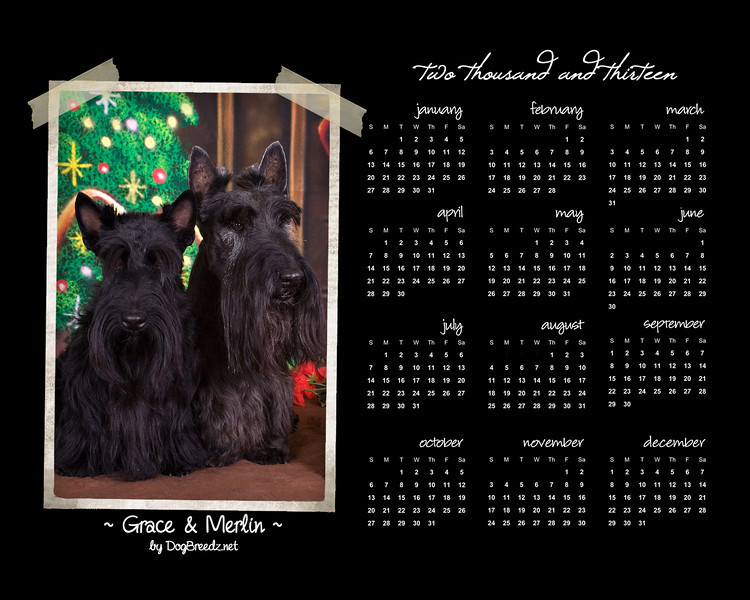 2013 Calendar - available in 8x10 size for reduced price.  Contact the photographer for pricing information.