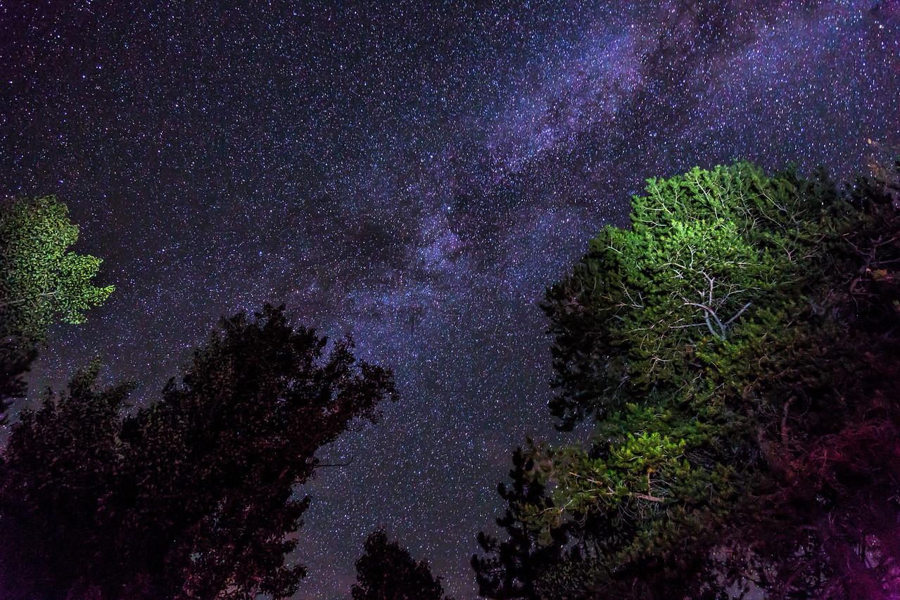 Night Sky in the Sierra Nevada