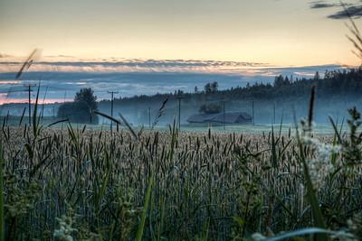 Finnland-Fields-after-sunset