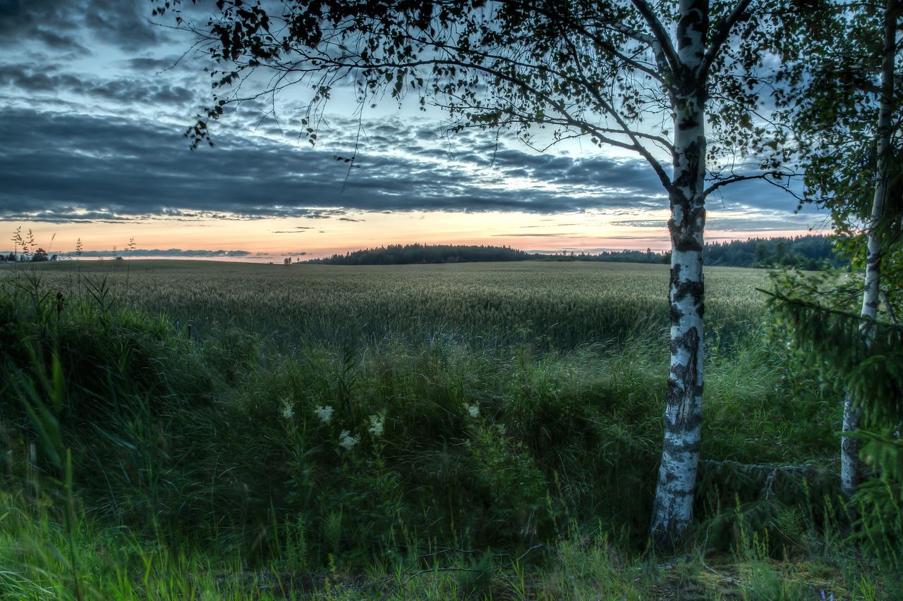 Finnland-fields-after sunset