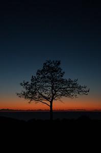 Last light at Torrey Pines