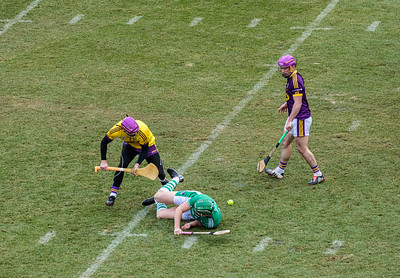 2018 Limerick vs Wexford -_8503649