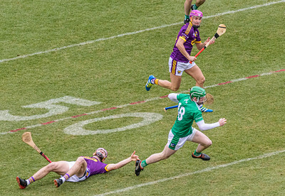 2018 Limerick vs Wexford -_8503668
