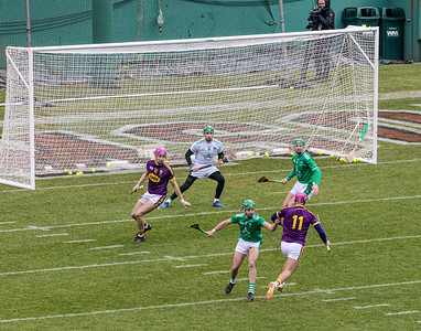 2018 Limerick vs Wexford -_8503677