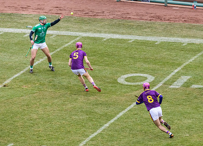 2018 Limerick vs Wexford -_8503642