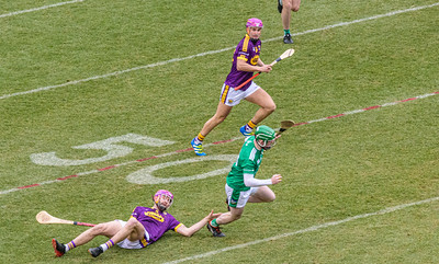 2018 Limerick vs Wexford -_8503667