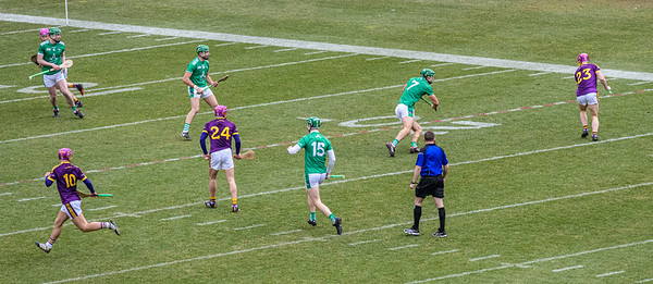 2018 Limerick vs Wexford -_8503655