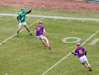 2018 Limerick vs Wexford -_8503641