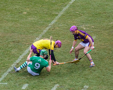 2018 Limerick vs Wexford -_8503651