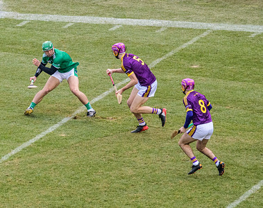 2018 Limerick vs Wexford -_8503644