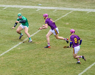 2018 Limerick vs Wexford -_8503643