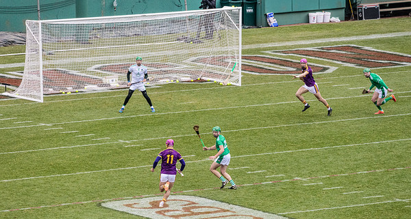 2018 Limerick vs Wexford -_8503675