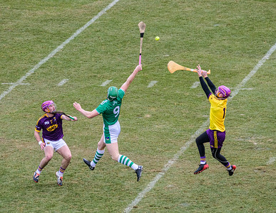 2018 Limerick vs Wexford -_8503646