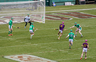 2018 Limerick vs Wexford -_8503679