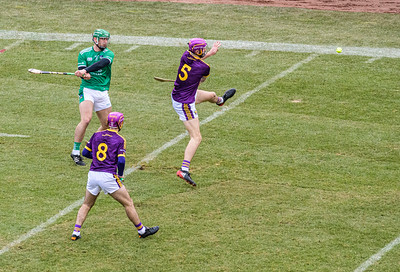 2018 Limerick vs Wexford -_8503645