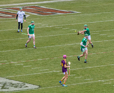 2018 Limerick vs Wexford -_8503666