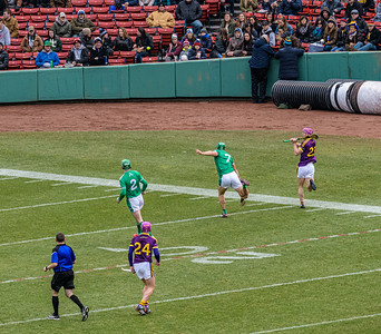 2018 Limerick vs Wexford -_8503660