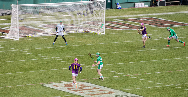2018 Limerick vs Wexford -_8503674