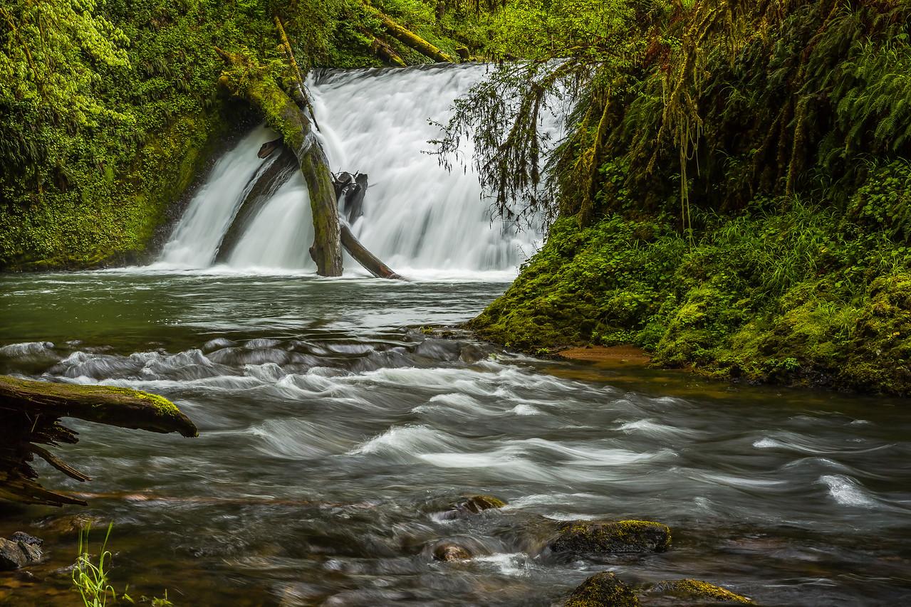 Lower North Falls, Oregon
