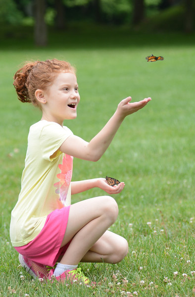 Taylor Henry, 8 of Bern Township, releases a butterfly at the Berks Visiting Nurses Association 12th Annual Butterfly Release. The event is held in honor and memory of loved ones.