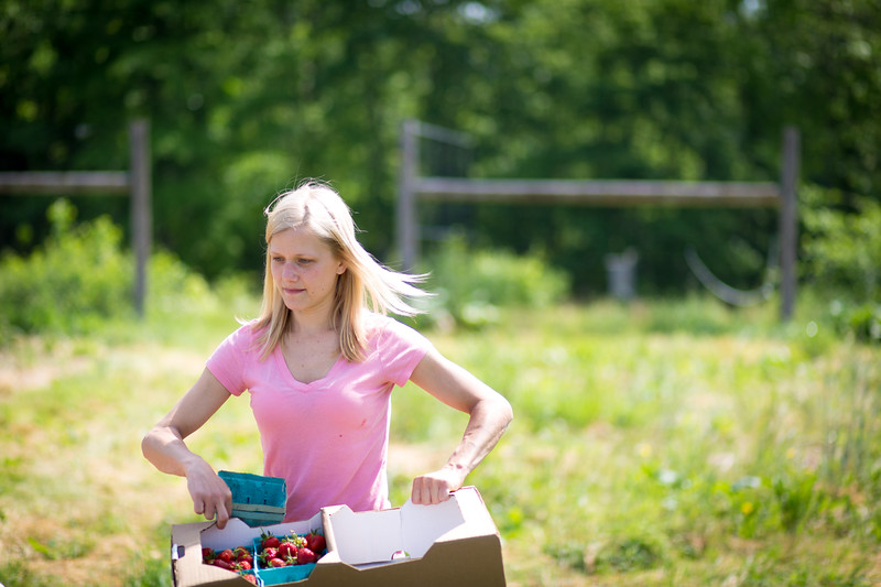 Jill Stuebner picks strawberries and asparagus at the farm between 8:00 a.m. and 1:00 p.m. every day. The strawberries must be dried in new cartons so they do not get moldy.