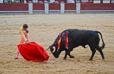 Again ..... Miguel Ángel León (Novillero -- Novice) Passes the Bull